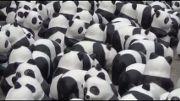 Paper panda army takes over Taipei