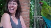 Funniest Parrot Video Ever