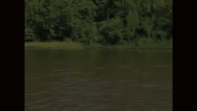 IFFR 2013 - The Island of St. Matthews - Trailer # 1