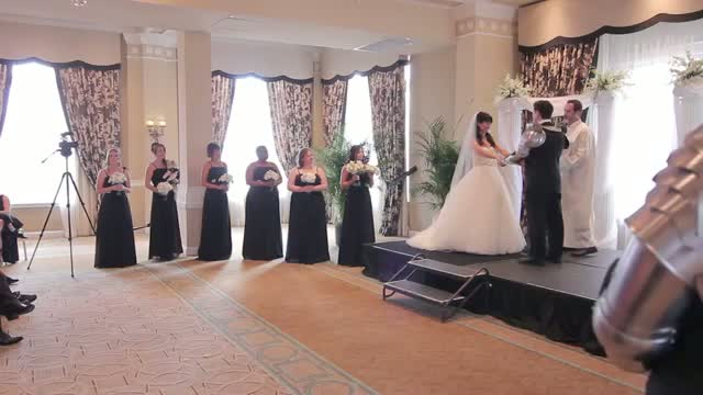 OFFICIAL Epic Wedding Ceremony Battle Batman, Iron Man & More