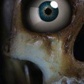 Skeleton Eye Live Wallpaper v1.07