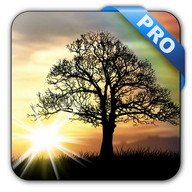 Animgif Live Wallpaper 2 Pro Android App Apk Com Direxar Animgiflivewallpaper2pro By Direxar Software Download On Phoneky