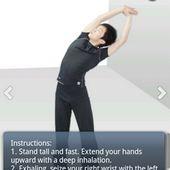 Stretch Exercises