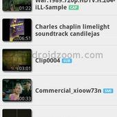 mx videoplayer codec armv6vfp
