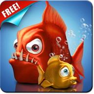 Crazy Fish Live Wallpaper