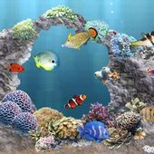 aniPet Aquarium Live Wallpaper 2.4.16