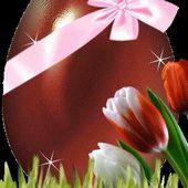 Easter Egg Live Wallpaper