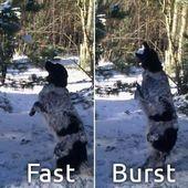 Fast Burst Camera 1.2.7