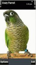 Crazy Parrot v1.0.0 S60 5th Apps Symbian3 Apps Software Apps