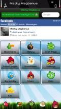 Angry Birds Opera Mini 6.5 Skin