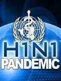 Информация о SwineFlu (H1N1)