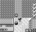 Pokemon Generatios ( Red H@ Ck)