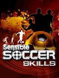 Sensible Soccer Skills 2011
