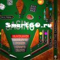 MicroPinball v.3.04