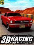 3D Racing Evolution