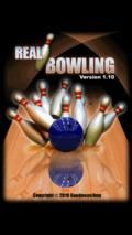 Real Bowling (Motion Sensor)